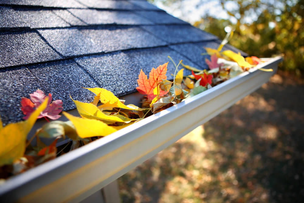 rain-gutters-for-wooden-shed