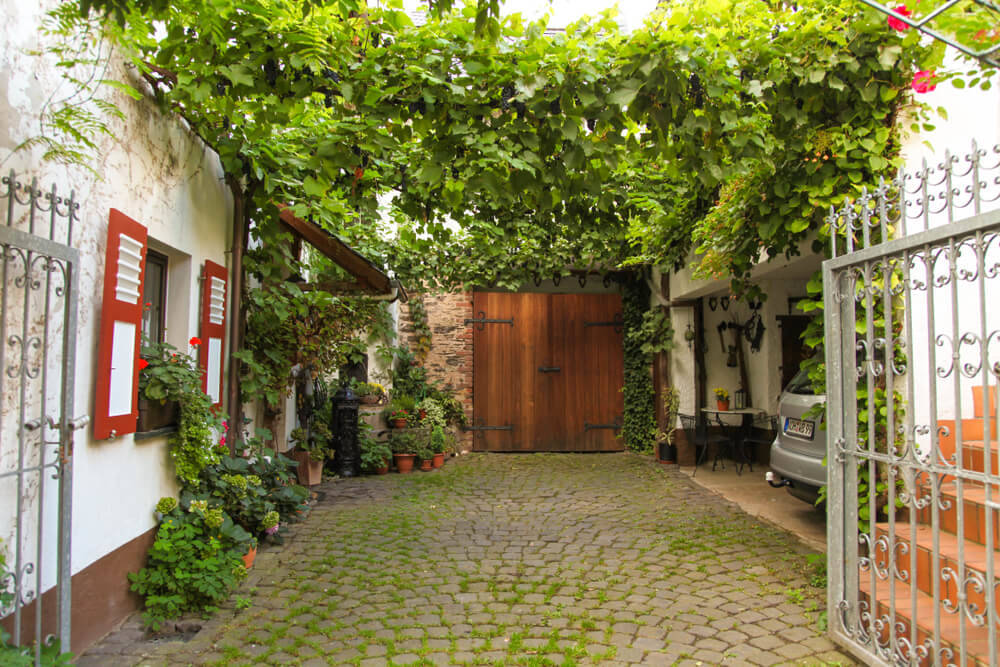 wooden-carport-vines