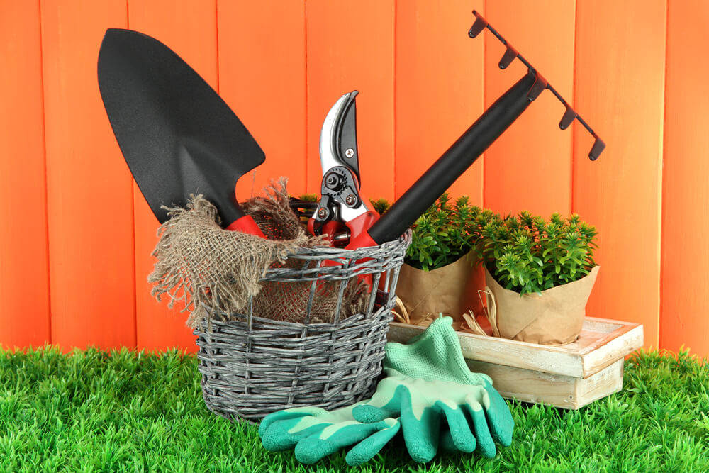 How to Prepare Your Wooden Shed for Garden Tool Storage in 5 Easy Steps