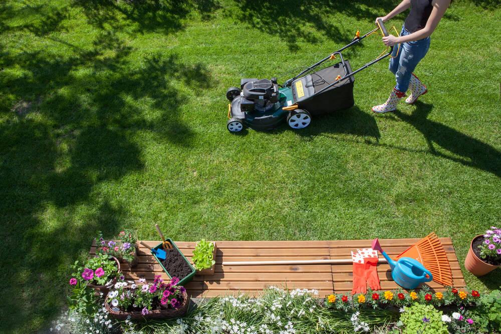 Garden-activities-summer