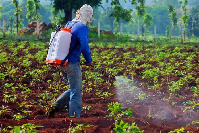 Pesticide ants
