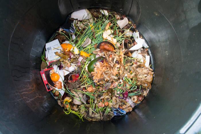 compost garden plants