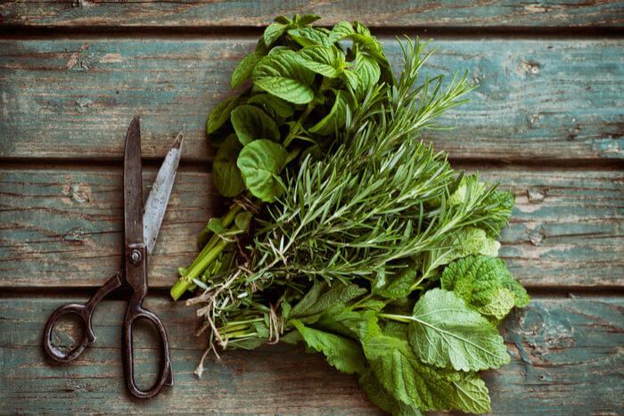herbs-vegetables