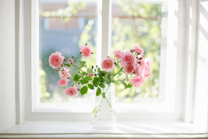 roses-vase-garden-plants
