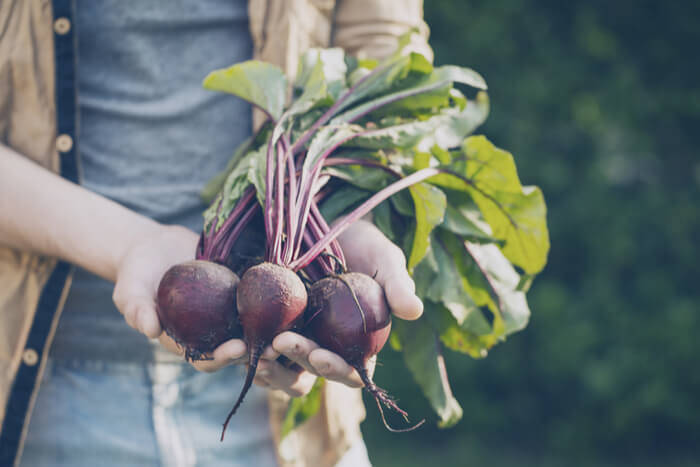 How to Start a Vegetable Garden: A Beginner's Guide