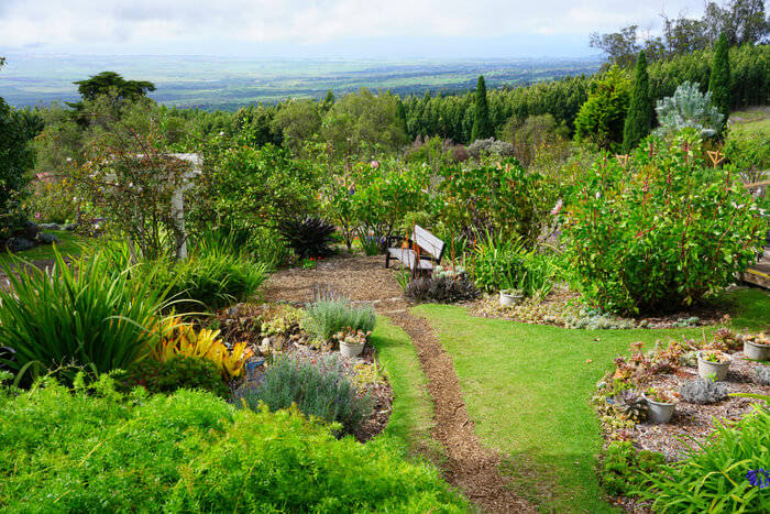 Gardening on a Slope: Tips and Tricks
