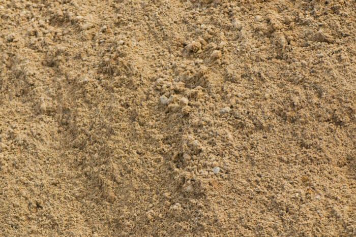 Best Soil for New Trees sandy soil