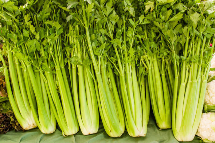 How to grow celery and what benefits it has